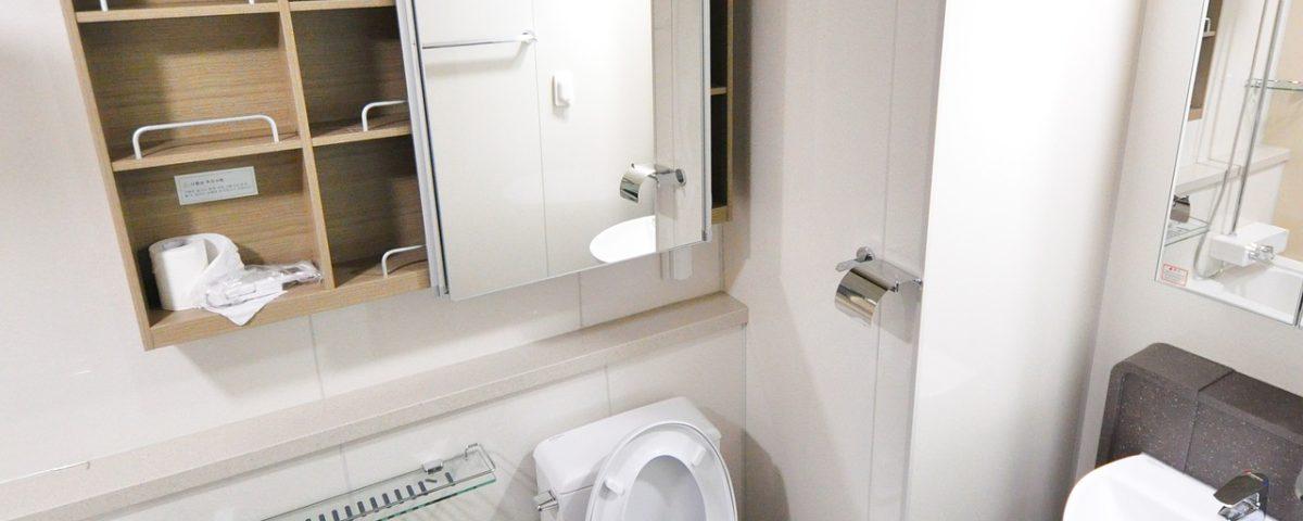 toilet keeps running